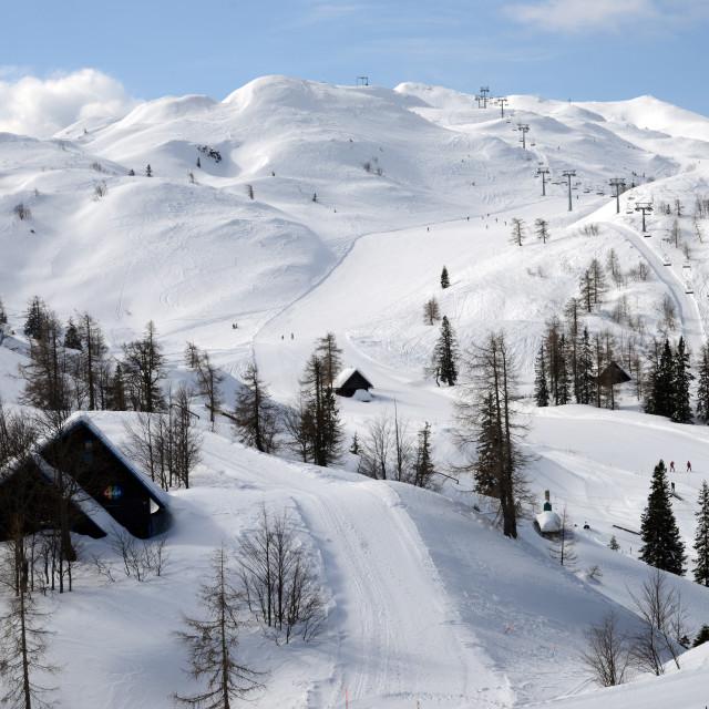 """Snow Fields - Julian Alps Slovenia"" stock image"