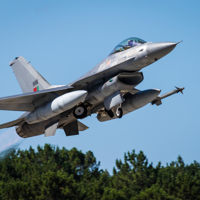 """""""Portuguese Air Force F-16 taking off"""" stock image"""