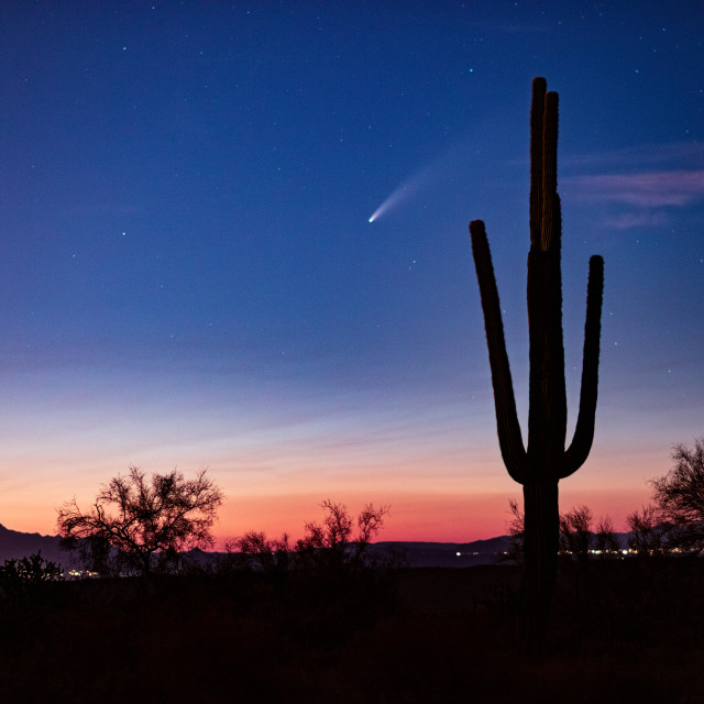 """Comet Neowise over Phoenix, Arizona"" stock image"