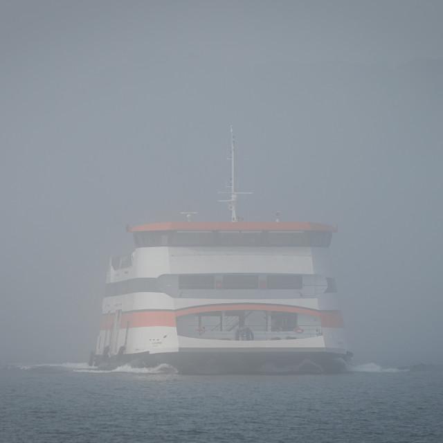 """Portuguese catamaran ferryboat Almadense crossing the river under fog"" stock image"