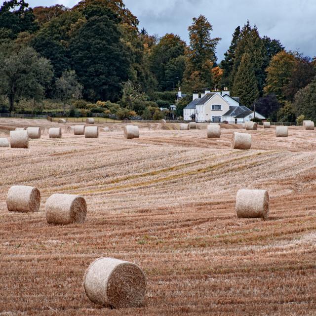 """""""Autumn Farming"""" stock image"""