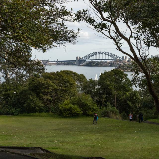 """""""A distant view of Sydney Harbour Bridge"""" stock image"""