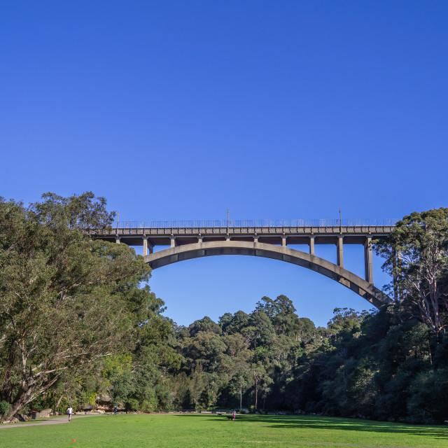 """Long Gully Bridge, Cammeray, Sydney"" stock image"