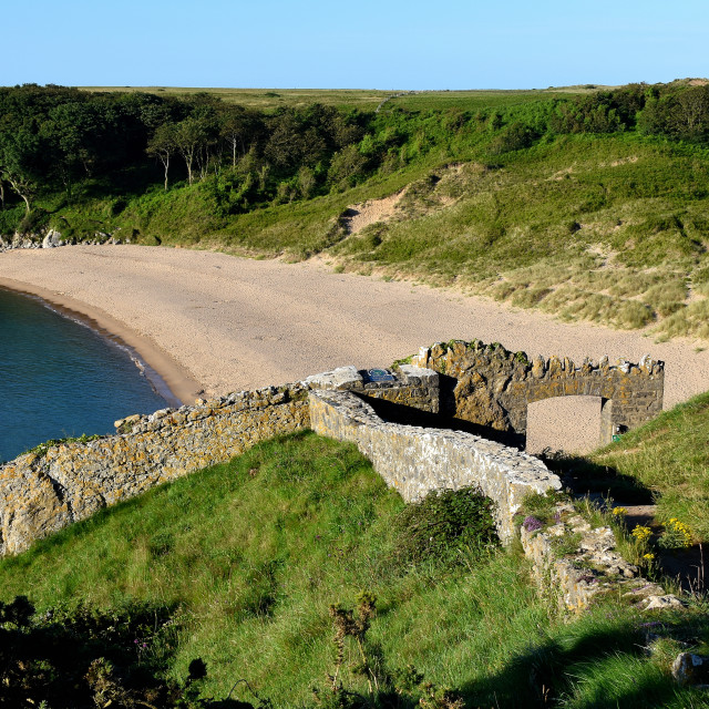 """""""Barafundle Bay in Pembrokeshire"""" stock image"""