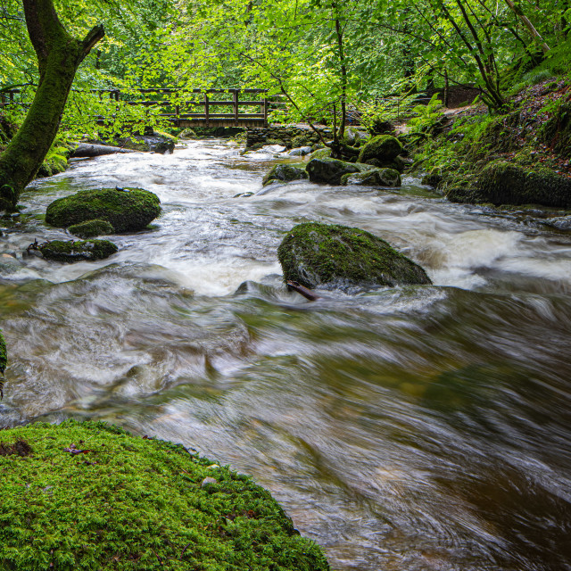 """Sock Ghyll in Summer"" stock image"
