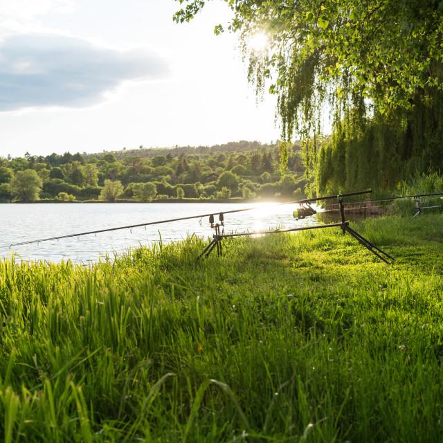"""Carp fishing session at the Lake."" stock image"