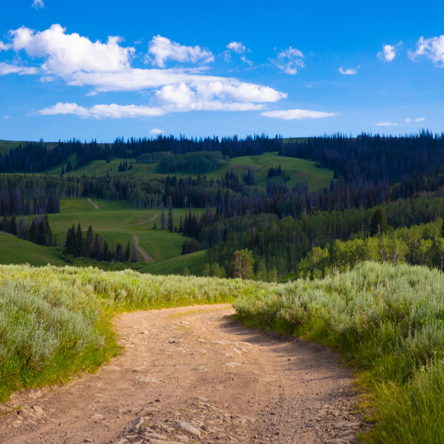 """""""Dirt Road in Mountains"""" stock image"""