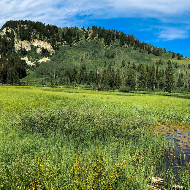"""""""Pond Mountain Utah"""" stock image"""