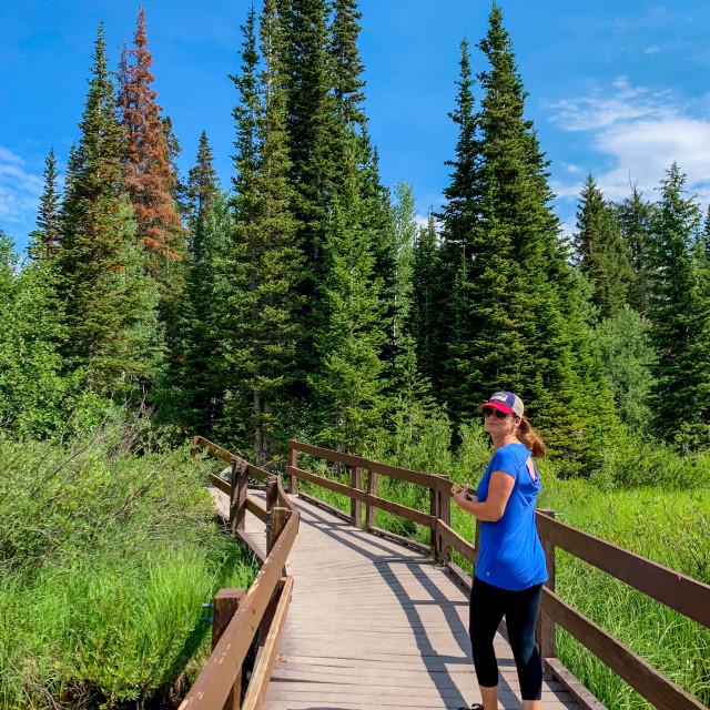"""Mountain hiker"" stock image"