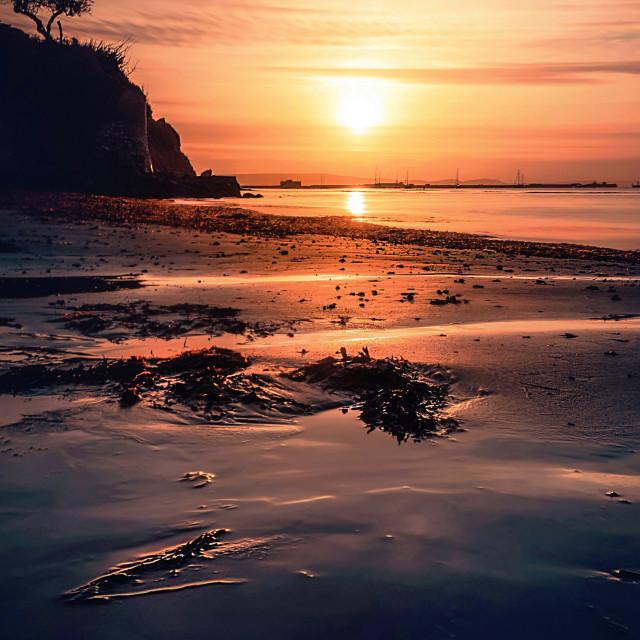"""Castle Cove and Sandsfoot Beach Sunrise (Portrait View)"" stock image"