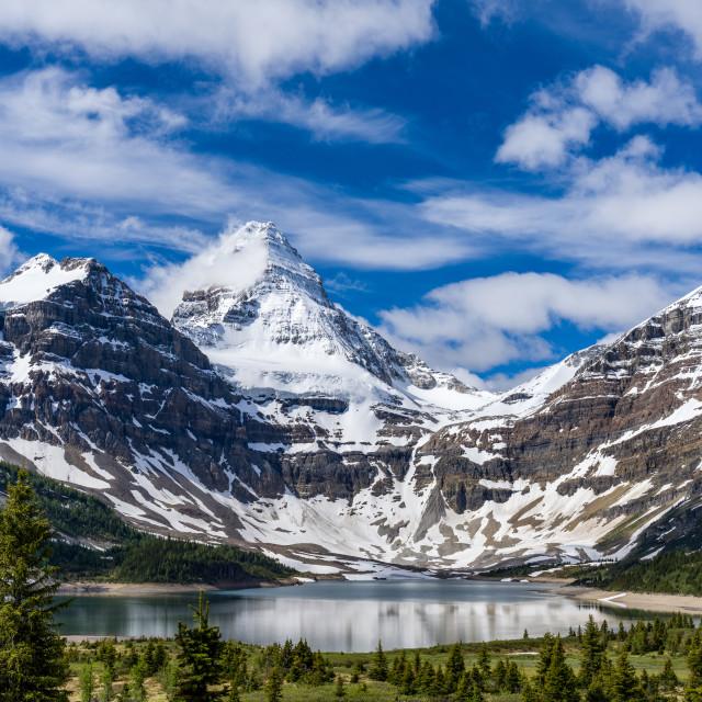 """""""Assiniboine Provincial Park"""" stock image"""