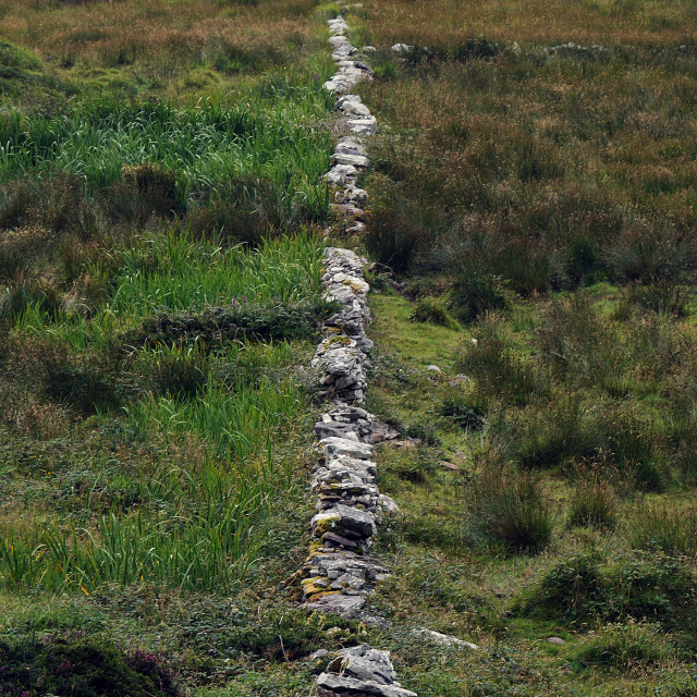 """""""Stone wall, Ballinskelligs, Co. Kerry"""" stock image"""