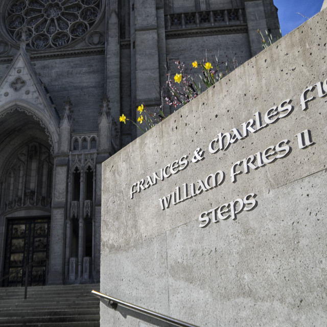 """""""The steps at Grace Cathedral"""" stock image"""