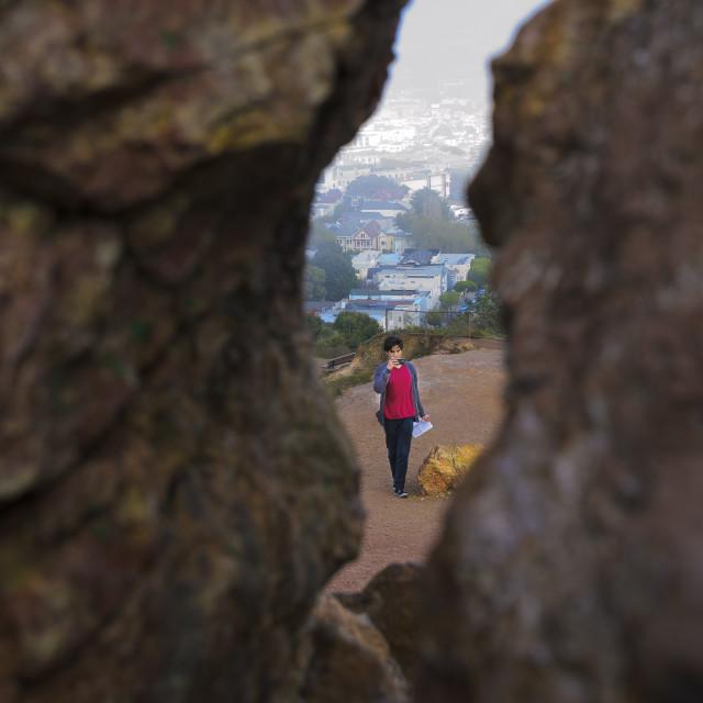 """""""Fog descending onto Corona Heights"""" stock image"""