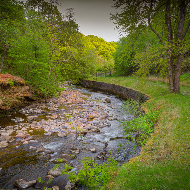 """""""The Afon Twrch at Cwmllynfell"""" stock image"""