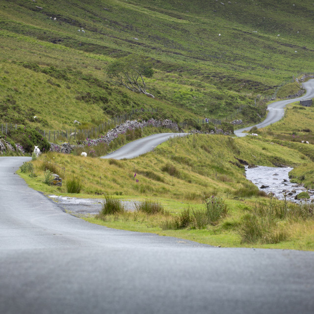"""Winding Welsh mountain road"" stock image"