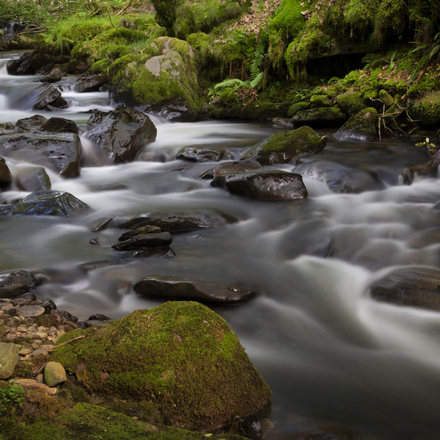 """Melincourt Brook in Resolven"" stock image"