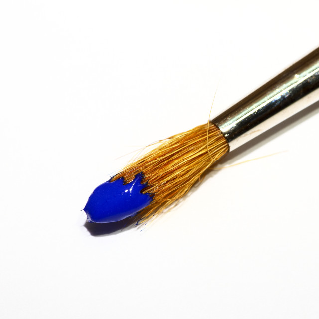 """""""Artists paint brush loaded with blue paint isolated on a white background"""" stock image"""
