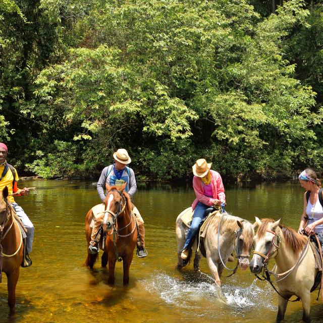 """Horseriding"" stock image"