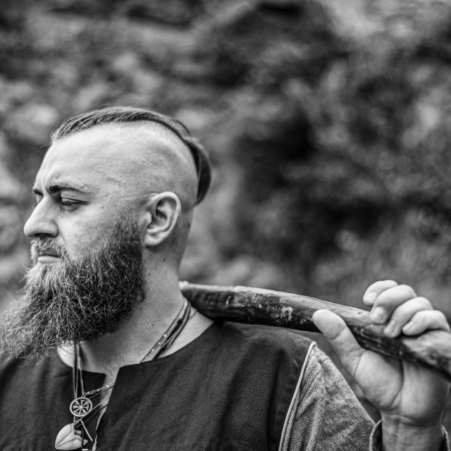 """""""Viking portrait with thick beard"""" stock image"""