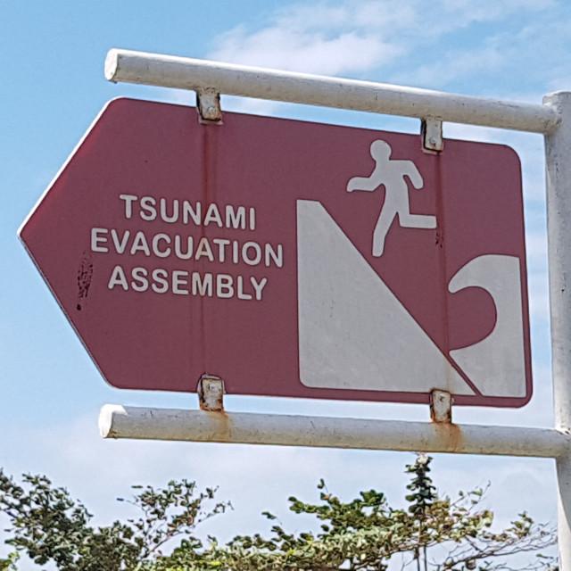 """Tsunami Evacuation Assembly Sign"" stock image"