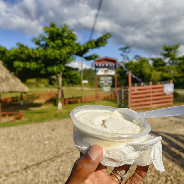 """""""Ice Cream Stop"""" stock image"""