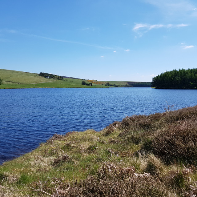 """Whiteadder Reservoir, East Lothian, Scotland"" stock image"
