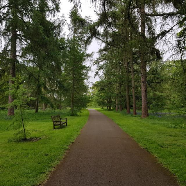 """Kew Gardens, England"" stock image"