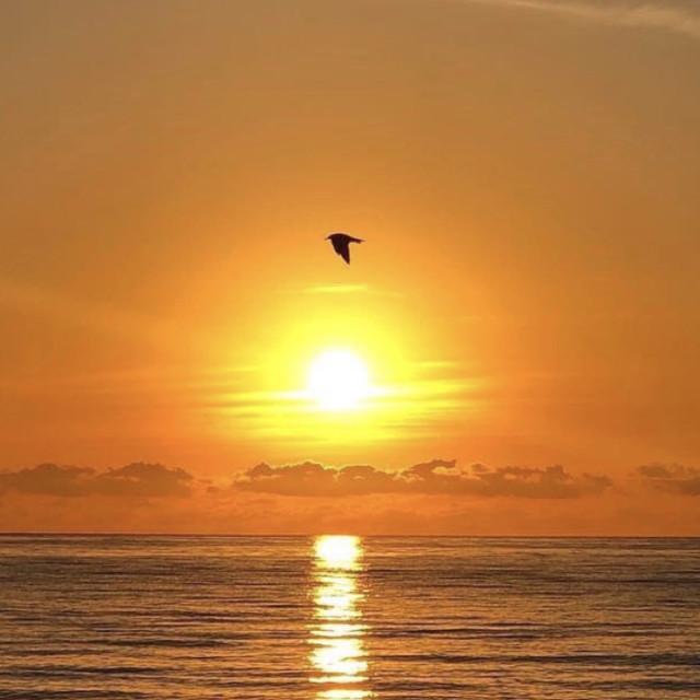 """""""Icarus - Sunrise, Miami Beach"""" stock image"""