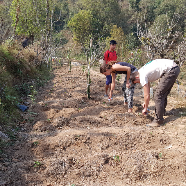 """""""Horticulture volunteers in Gorkha District, Nepal"""" stock image"""