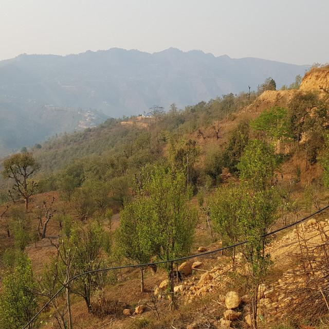 """Gorkha District, Nepal"" stock image"