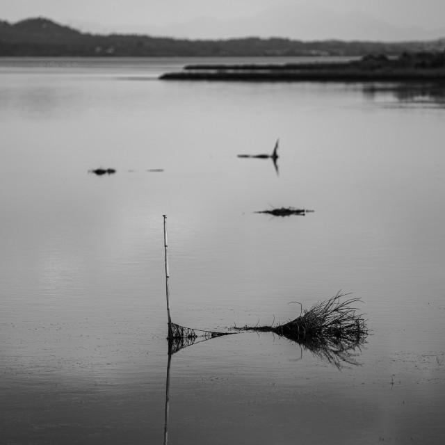 """Calm On The Lagoon"" stock image"