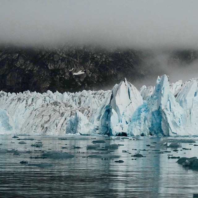 """Glacier front"" stock image"