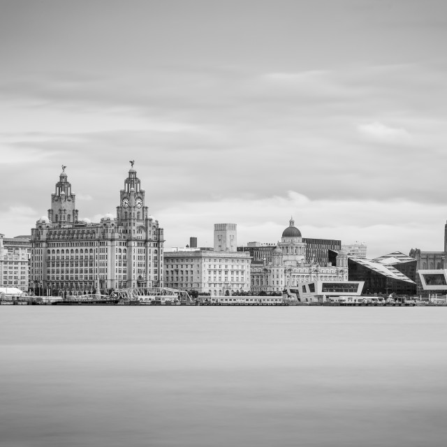 """Letterbox crop of the Liverpool skyline in monochrome"" stock image"