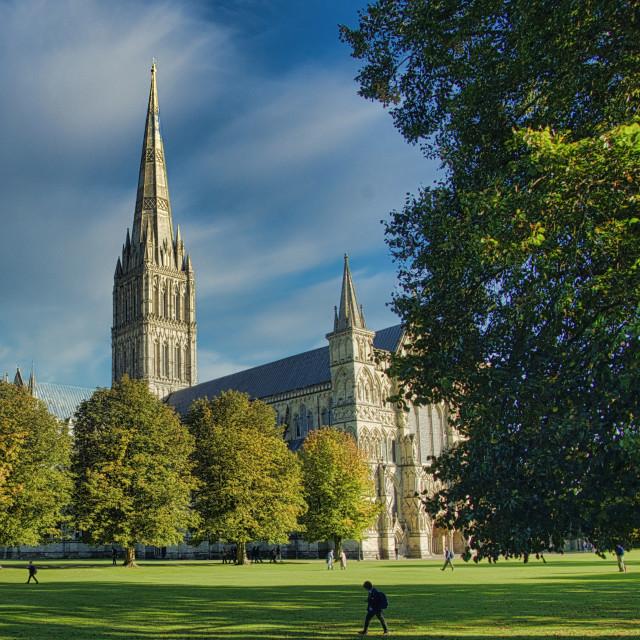 """Salisbury Cathedral"" stock image"
