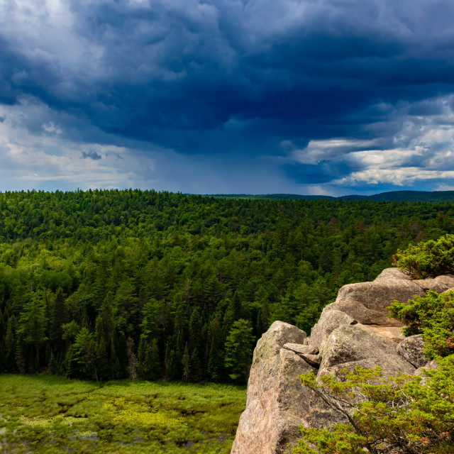 """""""Rain on the Horizon Over a Vast Forest"""" stock image"""