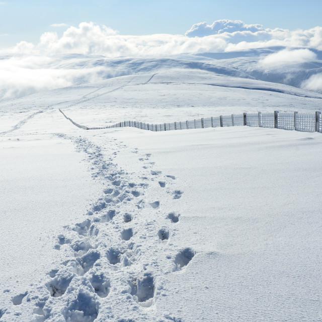 """Snowscape"" stock image"