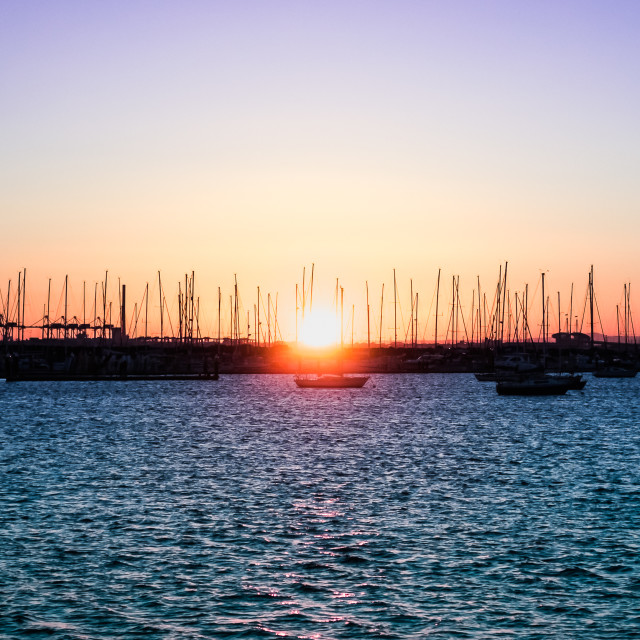 """Masts silhouetted at sunset in a marina"" stock image"
