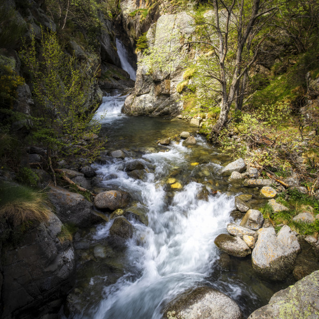 """""""Small quickly creek between the rocks in a sunny day"""" stock image"""