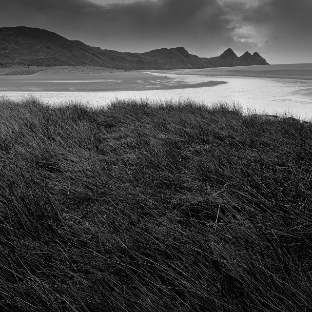 """In the rough, Three Cliffs Bay."" stock image"