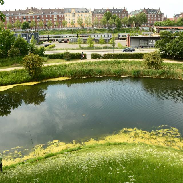 """""""View from Kastellet, Copenhagen, Denmark"""" stock image"""