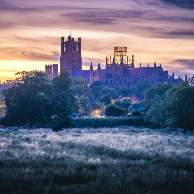 """""""Ely Cathedral Sunset, Cambridgeshire UK."""" stock image"""