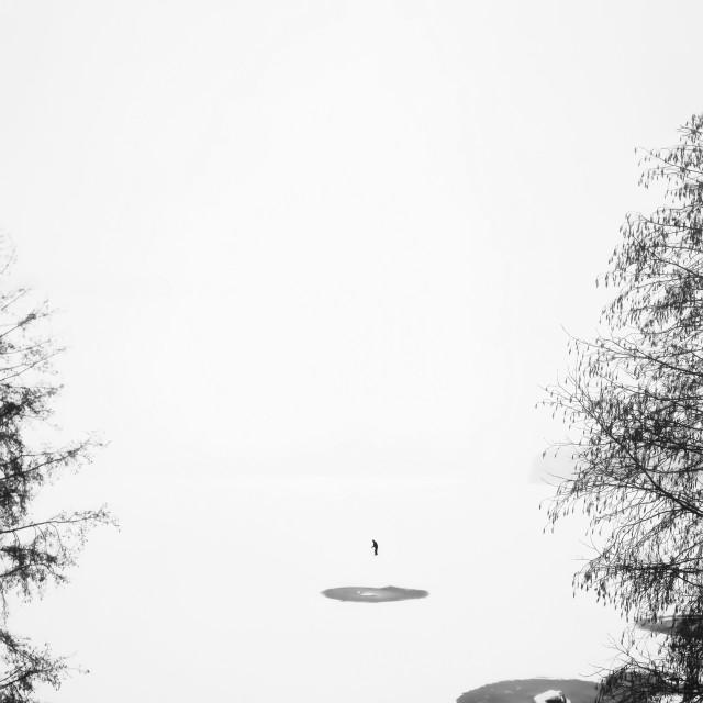 """""""Skier At Lake"""" stock image"""