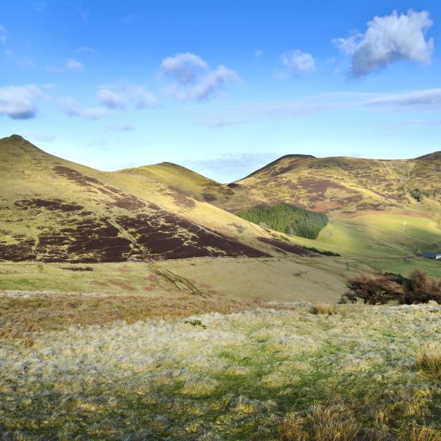 """Pentland Hills"" stock image"