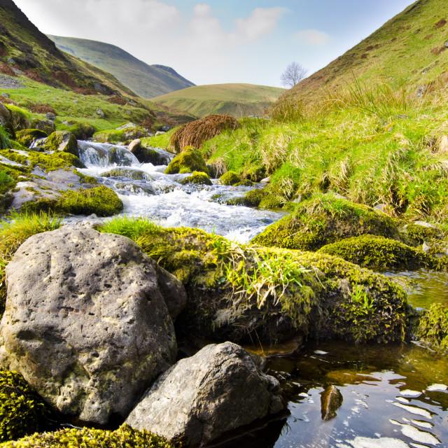 """Alva Glen, Scotland"" stock image"