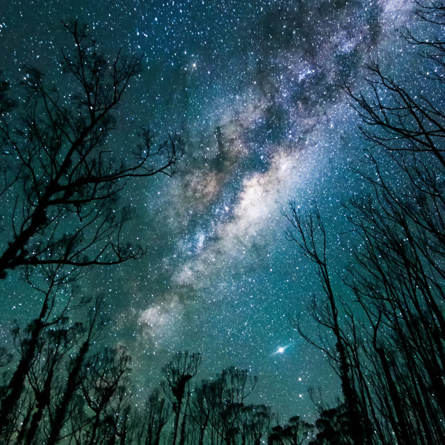 """""""The Milky Way above a blackened landscape"""" stock image"""
