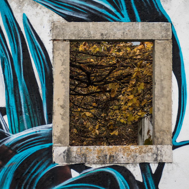 """""""Fall leaves framed by a stone window"""" stock image"""