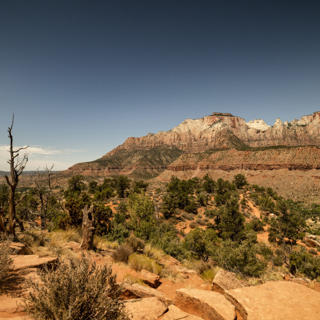 """The Watchman Trail"" stock image"