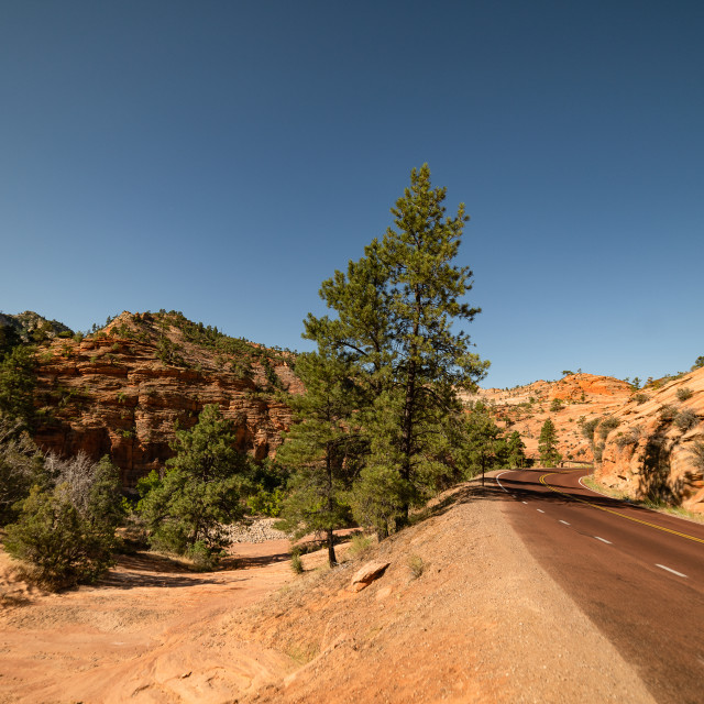 """Zion National Park"" stock image"