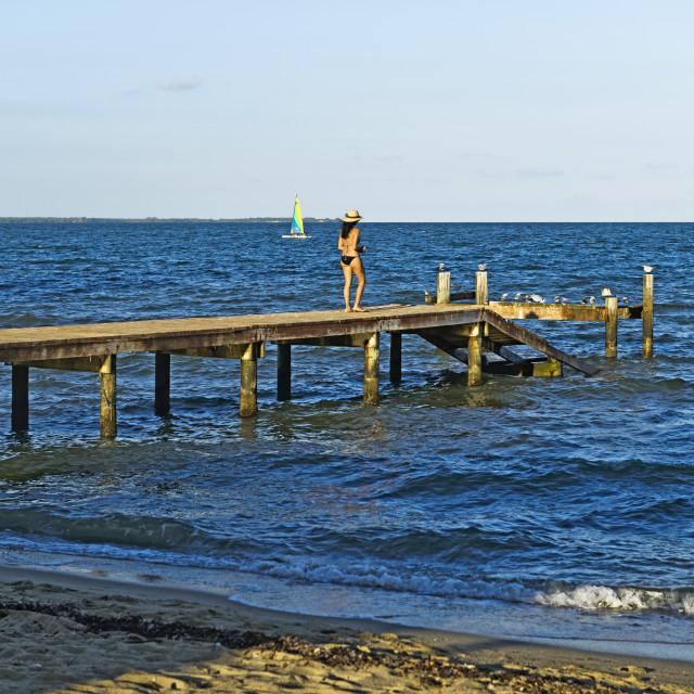 """Hopkins Beach"" stock image"